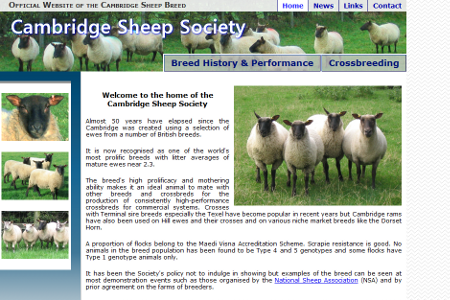 Cambridge Sheep Society website designed by Steven Malley